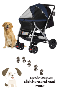 dog jogging stroller - best dog stroller