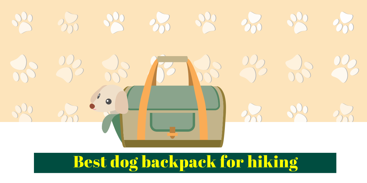 Best dog backpack - Dog hiking backpack: carry your dog in a backpack