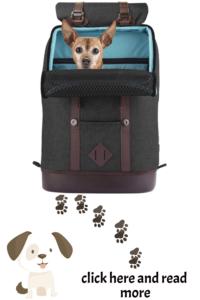 dog backpack for hiking