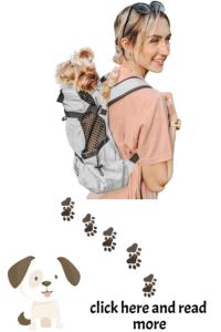 small dog hiking backpack