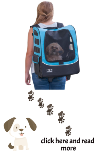 backpack to carry dog
